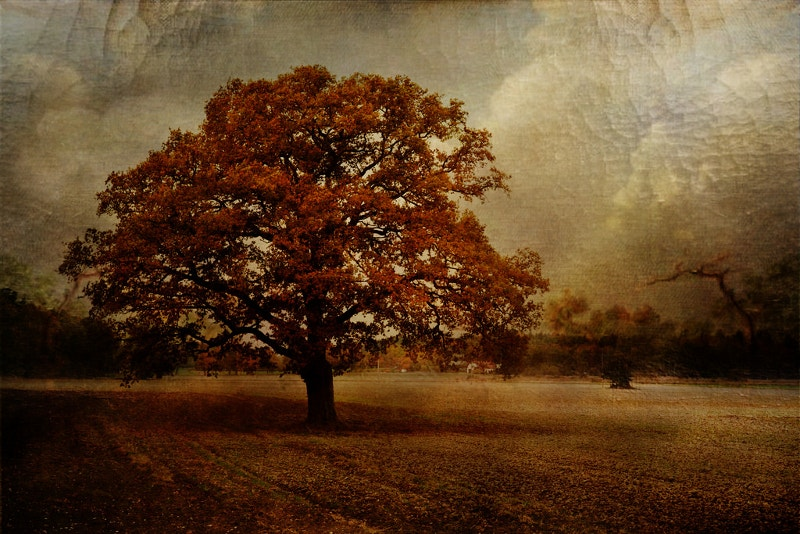 Vintage Tree Painting