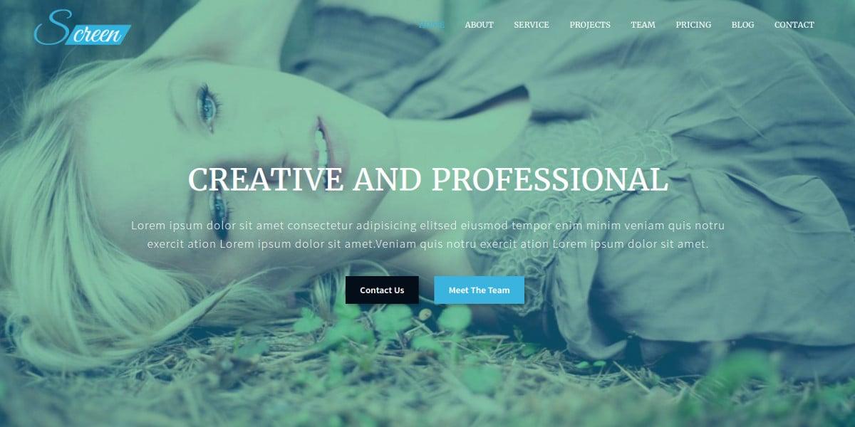responsive-onepage-business-joomla-website-theme-19