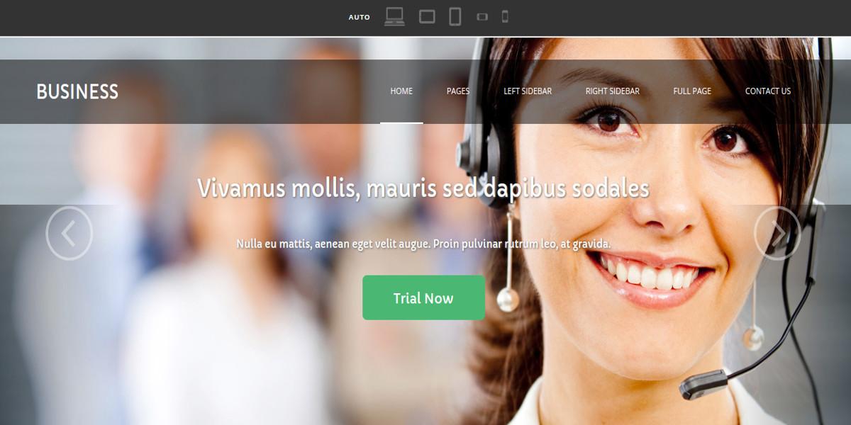 siness industry website template
