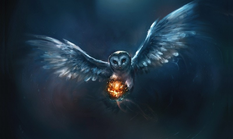 Owl Painting Artwork