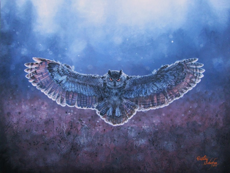 Owl in Flight Painting