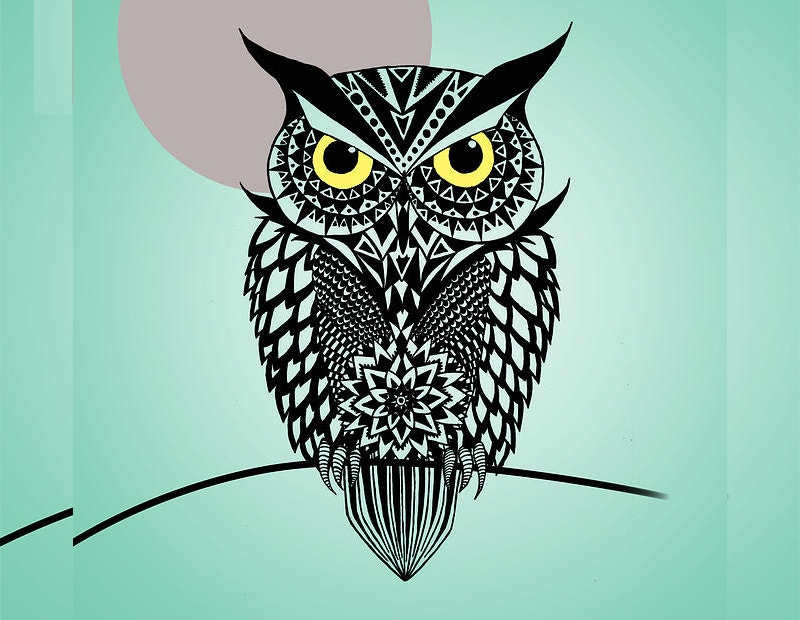 Owl Art by by Mark Ashkenazi