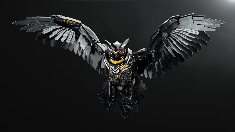 Dark Owl Artwork