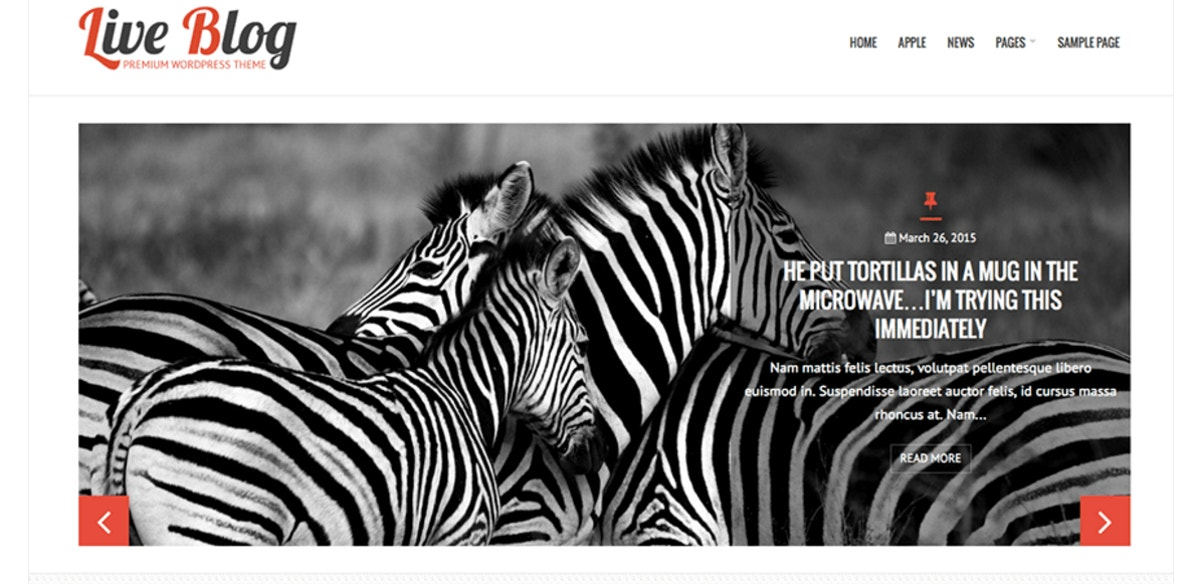 free blog wordpress theme1