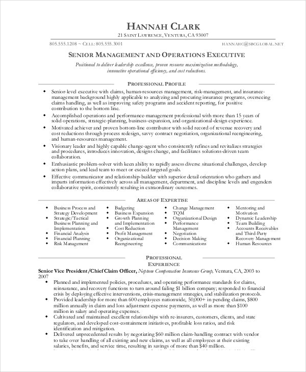 sales and operations manager resume