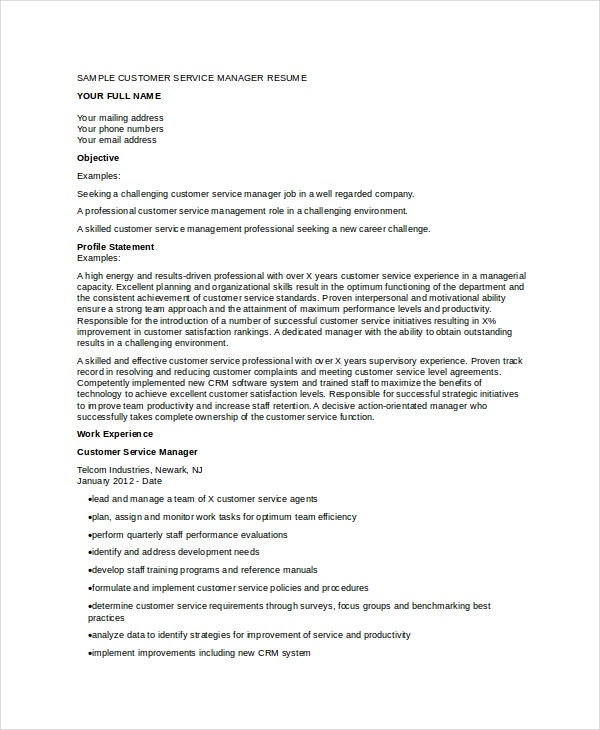 customer service manager resume in doc
