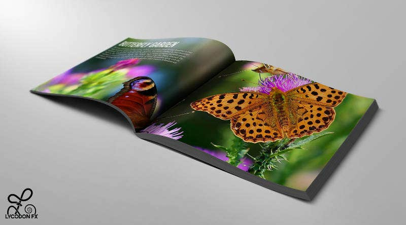 luxury brochure for villas