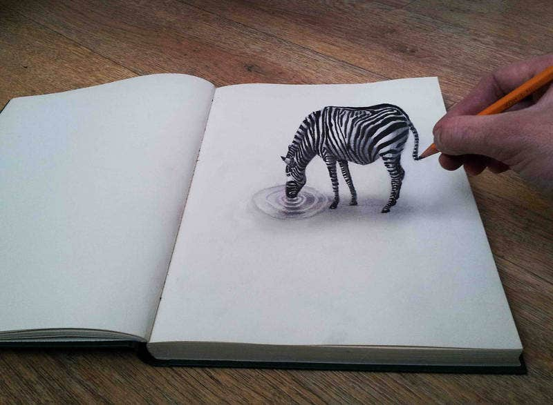optical-illusion-drawing-of-zebra