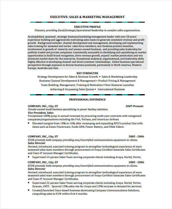 insurance account manager resume sample senior sales advertising executive examples example