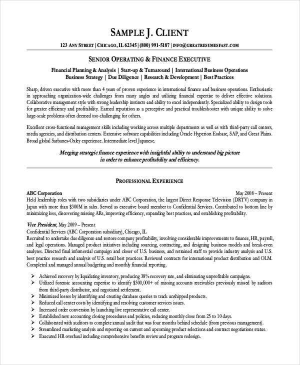 finance executive resume template