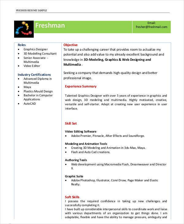 Genial Director Fresher Resume Template In PDF