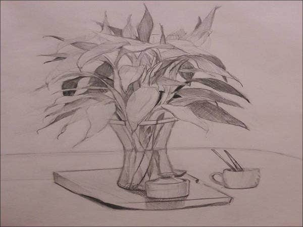 Flower pot pencil drawing