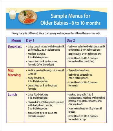 baby meal plan template