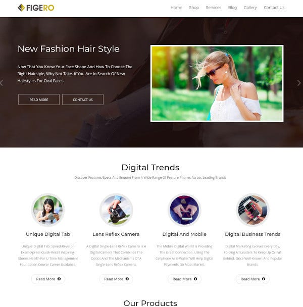 flexible wordpress theme1