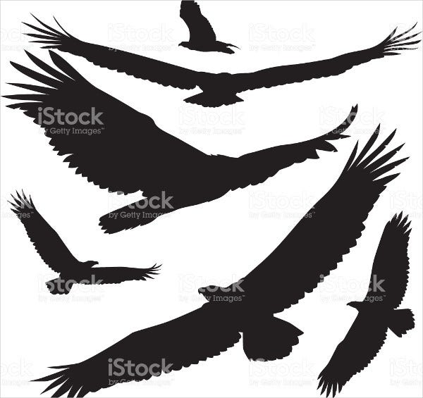 soaring eagle silhouette
