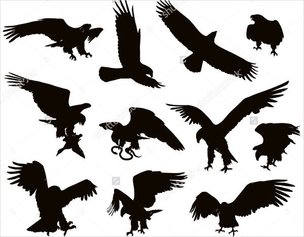 Set of Eagle Silhouettes
