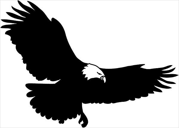 Eagle Bird Silhouette