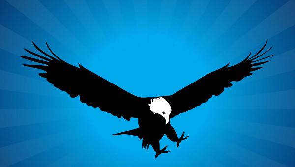 eaglesilhouettes