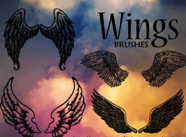 bird-wings-brushes