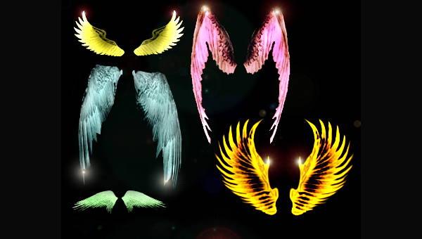 wingsbrushes