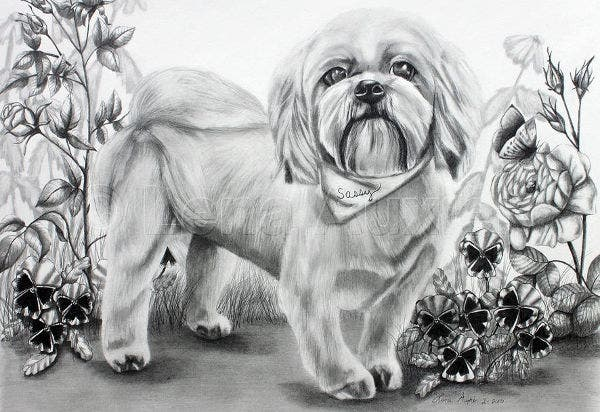 Black and White Art of Pet Animal