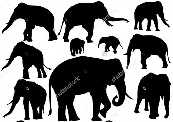 Asian Elephant Silhouette