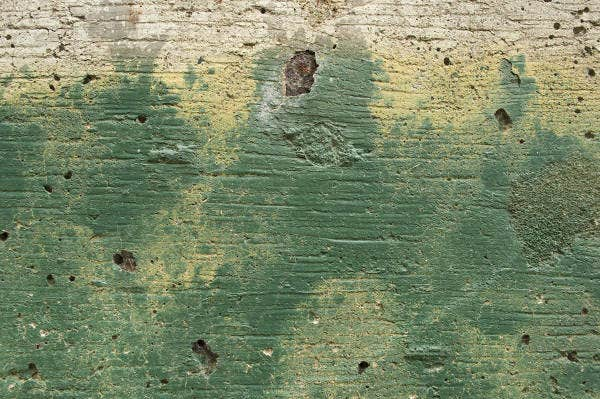 free green grunge paint texture