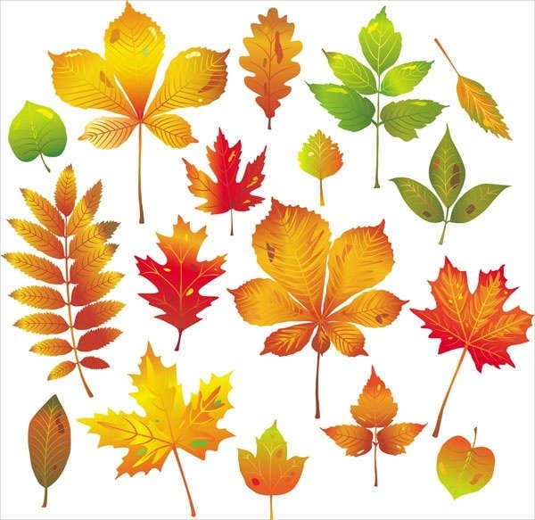 autumn leaves vector free vector