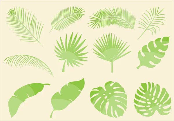 tropical leaf vectors