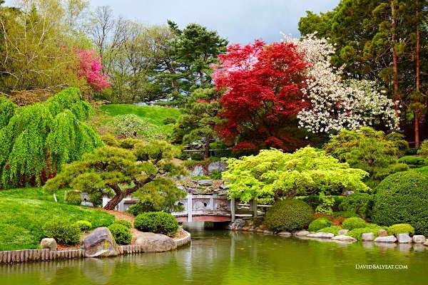 Spring Landscape Photography