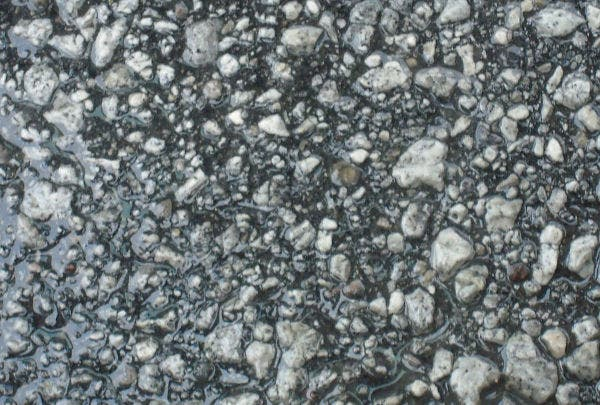 Free Wet Road Texture