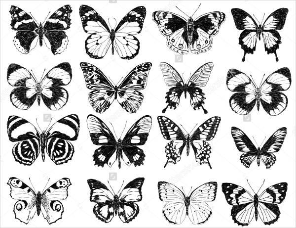 black-butterfly-silhouette