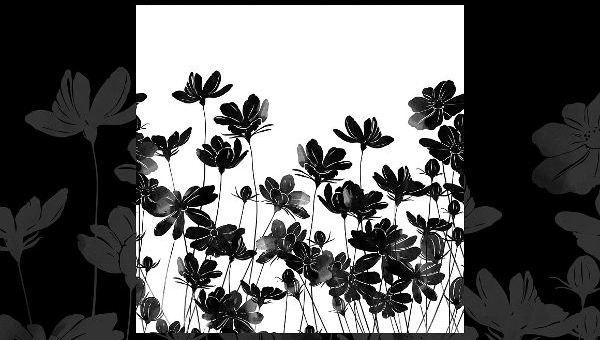 beautifulflowersilhouettes