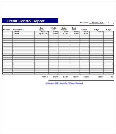 Credit Report Templates - 8+ Free Pdf, Excel Documents Download