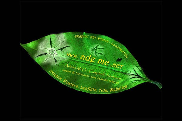 Creative Green Leaf Business Card