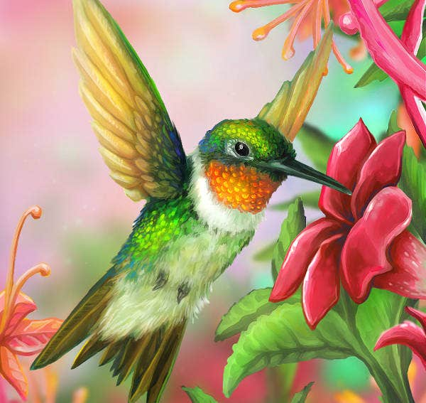 Hummingbird Layer Painting