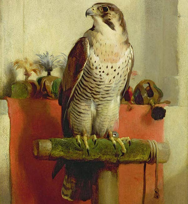Bird Painting by Sir Edwin Landseer