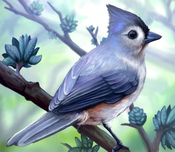 Bird Layer Painting