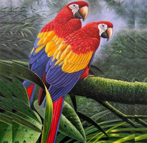 Awesome Bird Painting