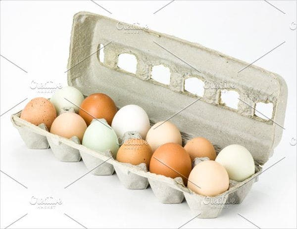 egg-packaging-template