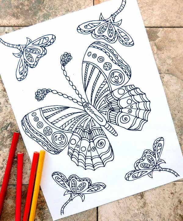 butterfly coloring pages1