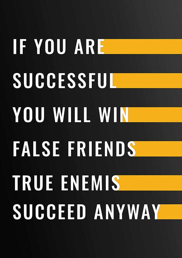 poster of succeed anyway