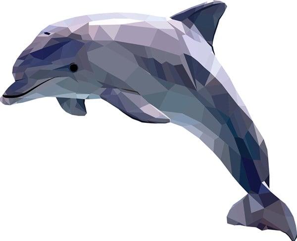 polygonal illustration of dolphin
