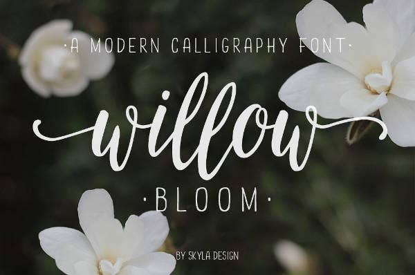 Cursive Caligraphy Font