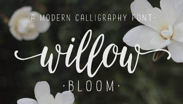 modern calligraph fonts feature images
