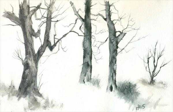 tree-drawing-by-david-clelland