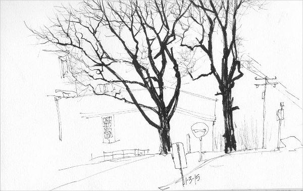 beautiful-tree-drawing