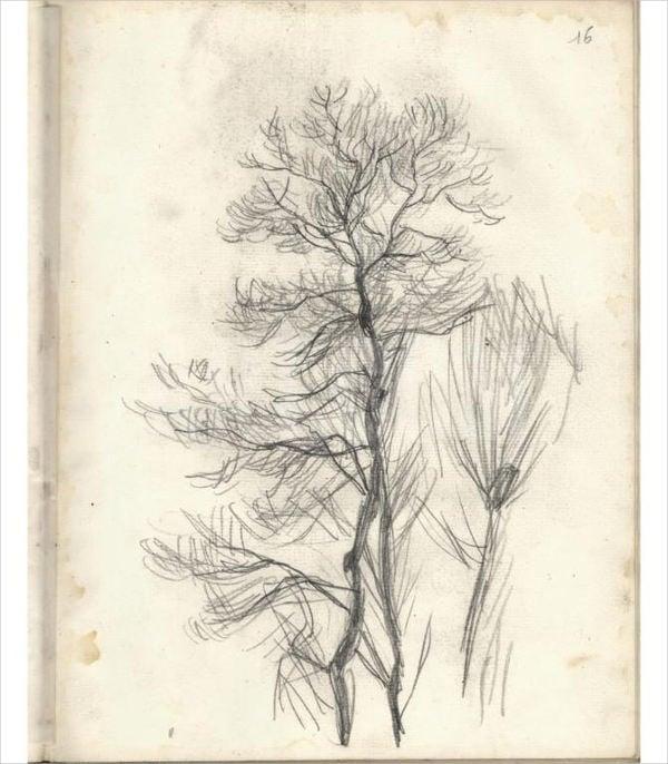 pine-tree-drawing