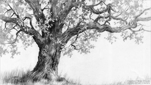 traditional-art-tree-drawing