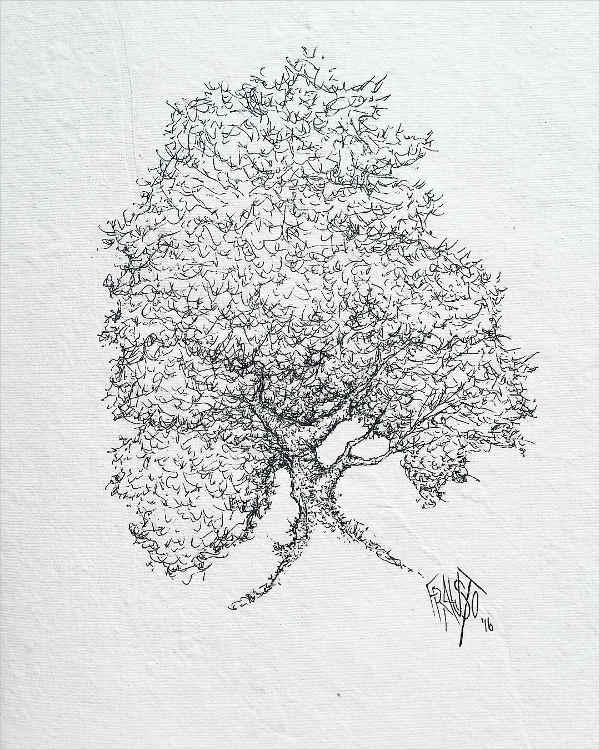 simple-tree-drawing